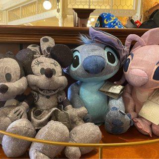 Denim Plush New Disney World